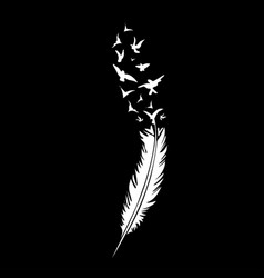black-and-white feather on black backround vector image