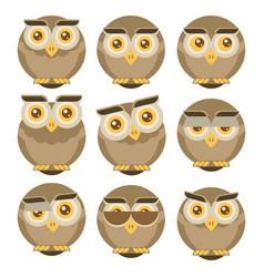 set of owls isolated on white background flat vector image