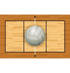 Volleyball Court and Volleyball vector image vector image