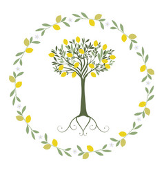garland of leaves lemon and orange blossoms with vector image