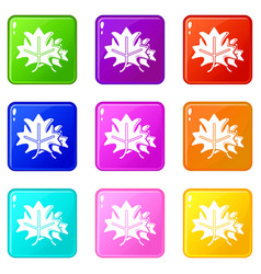 maple icons set 9 color collection vector image