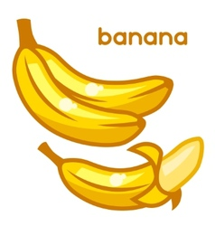 Stylized fresh bananas on white vector
