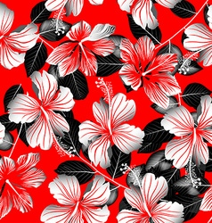 Tropical white hibiscus flowers with black leaves vector