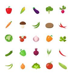 flat vegetables set vector image vector image