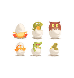 Cute birds and reptiles hatching set vector