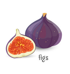 figs whole and cut healthy organic fruit with vector image