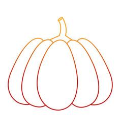 Isolated pumpkin design vector