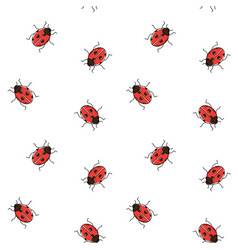 ladybug seamless pattern ladybird repeating vector image