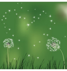 Love background with realistic dandelion shaped he vector