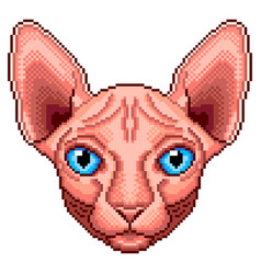 pixel sphinx cat portrait detailed isolated vector image