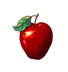 The red apple isolated on a white background vector