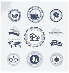 Labels eco vector image vector image