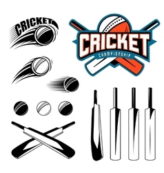 Set of cricket sports template logo elements - vector image vector image
