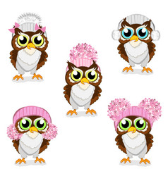 owls in knitted hats set vector image vector image
