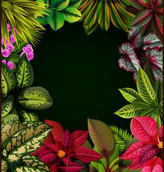 beautiful black background vector image