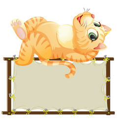 board template with cute cat on white background vector image