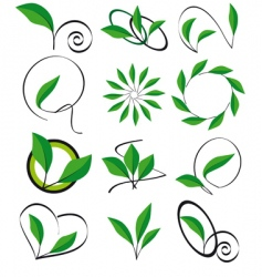Collection of leaves for design vector