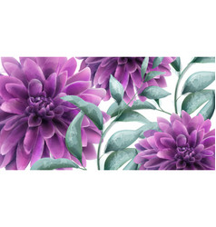 Dahlia purple flowers banner watercolor vector
