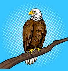 Eagle bird pop art style vector