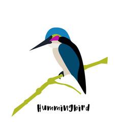 Flat icon sitting hummingbird colibri vector