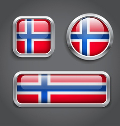 Norway flag glass buttons vector image