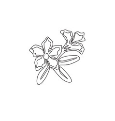 one continuous line drawing fresh beauty vector image