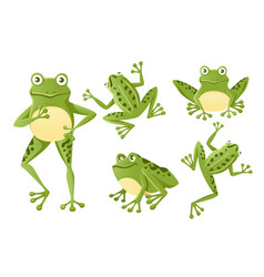 set cute smiling green frog sitting on ground vector image