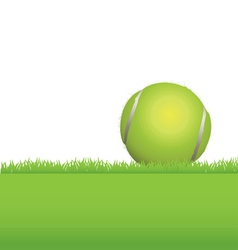Tennis Ball in the Grass vector image