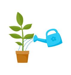 flat cartoon green plant in the ceramic pot vector image