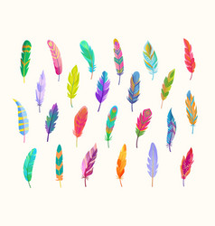 Exotic bird feathers set rich waterfall vector