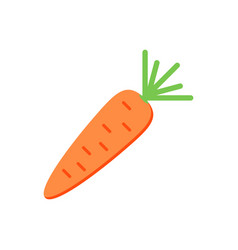 flat design carrot isolated on white background vector image