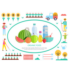 organic and natural food production banner vector image