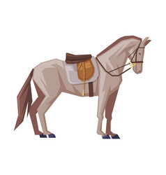 Side view thoroughbred racing horse with saddle vector