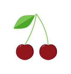 flat design cherry isolated on white background vector image