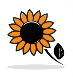 Abstract sunflower vector