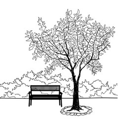 bench in park with tree city park landscape vector image
