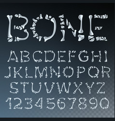 bone font letters anatomy abc alphabet vector image