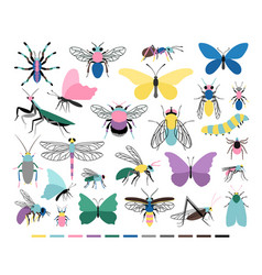 Cartoon insect set vector