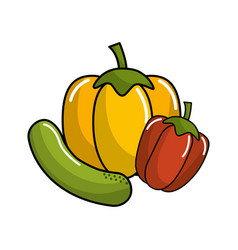 Cucumber yellow pepper and red pepper vegetable vector