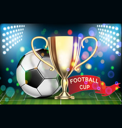 football 2018 championship soccer ball arena vector image