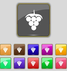 Grapes icon sign Set with eleven colored buttons vector