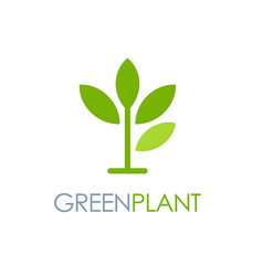 Green plant seed logo vector