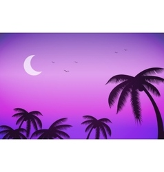 Sunset night sky and palm trees vector