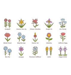Wild flowers color icons set spring blossom vector
