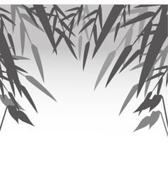 Bamboo leaves and nature design vector