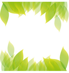 colorful border with leaves background design vector image