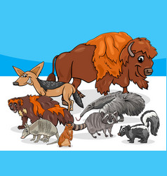 American animals group cartoon vector