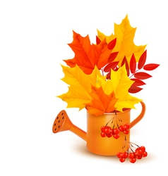 Autumn background with colorful leaves growing in vector image
