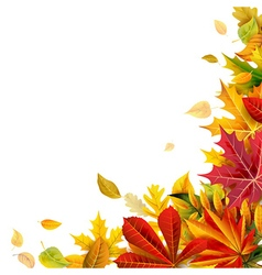 Autumn composition vector image