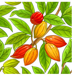Cocoa branches pattern on white background vector